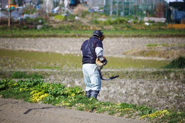 草刈りのイメージ画像